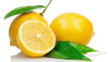 photo-citron